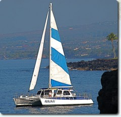 Beautiful Boat In Kona